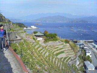 宇和島の遊子棚田。絶景!